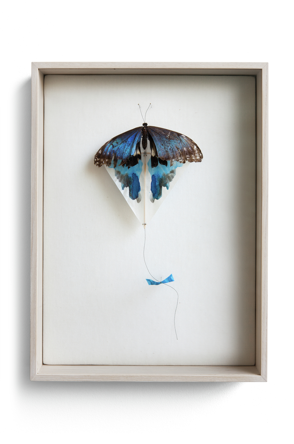"""Blue spot kite"" is attached to a paper kite and the missing wings are spots made of ink. (w:26 h:35 d: 5.5 cm)"